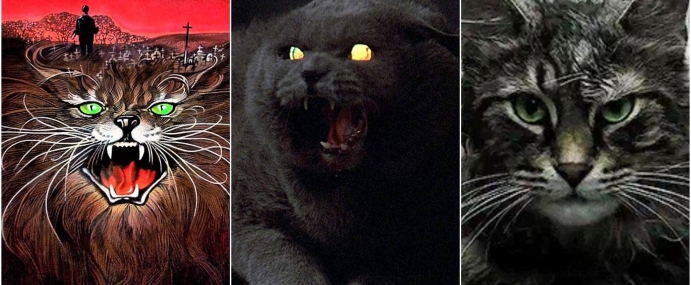 BOOK VS FILM: Pet Sematary: Horrifyingly Bad, or Horror Masterpiece?